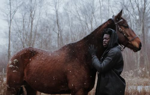 """Moses Sumney's """"Quarrel"""" Video Is a Tragic Love Story About a Horse"""