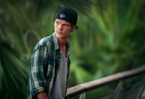 Avicii's Family Have Shared a Statement Following His Death