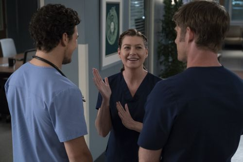 What's the Latest With Meredith's Love Triangle on Grey's Anatomy? Here's an Update