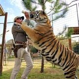 Tiger King's Joe Exotic Is Not a Good Person, and We Need to Stop Celebrating Him