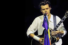 Harry Styles' Fans Plan to Turn Madison Square Garden Into a Rainbow Flag During His Performances