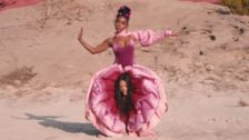 Janelle Monáe's New Music Video Is A Pink, Vagina-Inspired Celebration