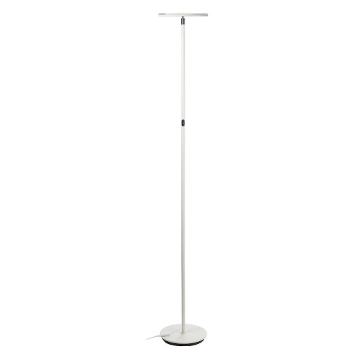 Nobody Ever Believes I Bought This Chic $65 Floor Lamp From Amazon