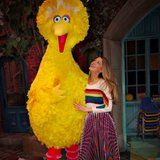 Blake Lively Used to Get Bullied - and What It Has to Do With Big Bird Will Make You Teary