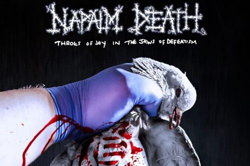 Napalm Death Return With Their Most Vital Album in Decades