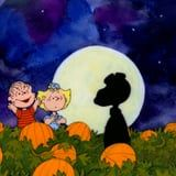 It's THAT Time of Year: It's the Great Pumpkin, Charlie Brown Is on Tonight
