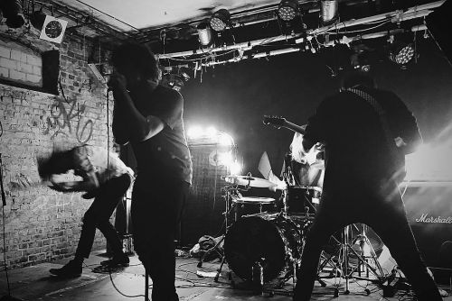 Cassus' 'Separation Anxiety' Is Inventive Screamo That Hammers at Capitalism