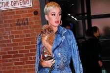 12 Times We Fell in Love With Katy Perry's Dog Nugget
