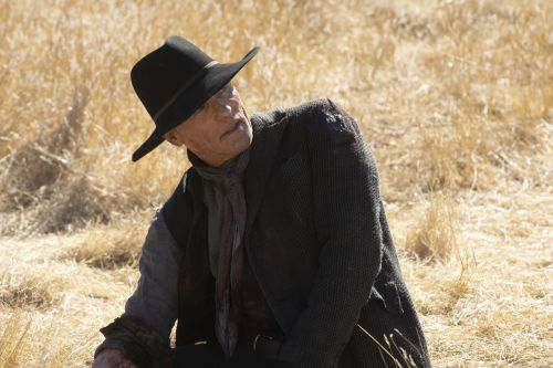 Westworld: The Finale's Postcredit Scene Delivers a Shocking Twist About The Man in Black