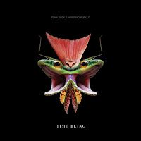 Tony Buck & Massimo Pupillo - Time Being + Unseen ***½
