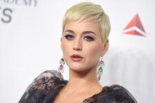 Musicologist Backs Up Copyright Infringement Claim Against Katy Perry on Day Two of 'Dark Horse' Trial