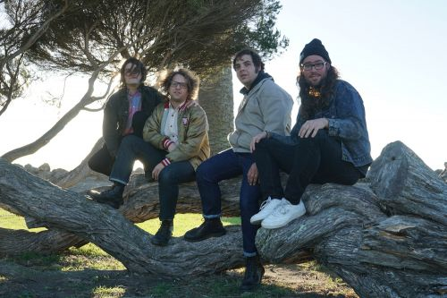 The Love-Birds Have Made a Worthy Addition to the Power Pop Panteon with 'In the Lover's Corner'