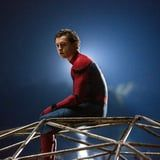 Don't Worry Web-Heads: Despite the Sony/Disney Standoff, Tom Holland Isn't Going Anywhere