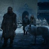 Whoa, We Totally Missed This Sad Detail About Ghost on Game of Thrones