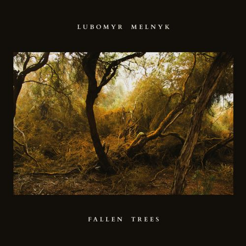 Lubomyr Melnyk's 'Fallen Trees' Is a Thing of Uncommon Beauty